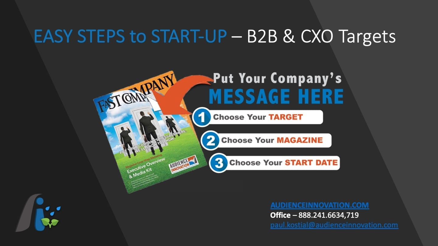 executive overview, Audience Innovation® – Magazine Cover Wrap » B2B Platform Overview